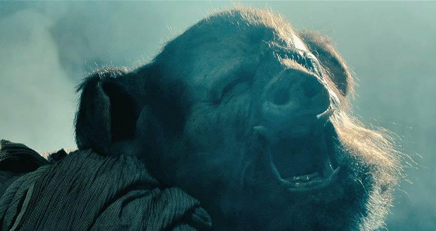 Wild Boar terror caníbal