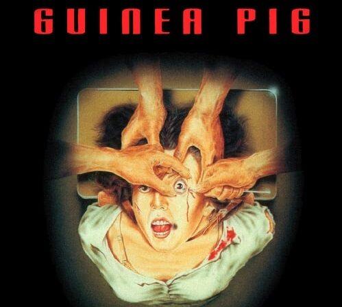 Guinea Pig saga