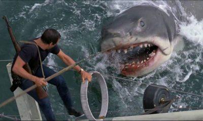 """10 curiosidades de """"Tiburón"""", la película de culto que cumple 46 años de estreno"""